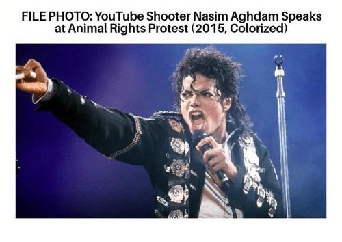 Насим Агдам