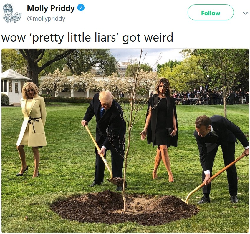 Трамп и Макрон сажают дерево