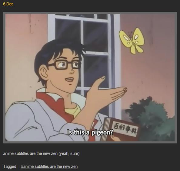 Это голубь?