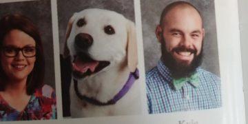 Собаки в школьных альбомах