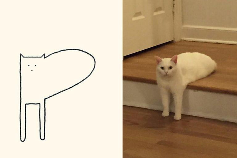 коты из линий