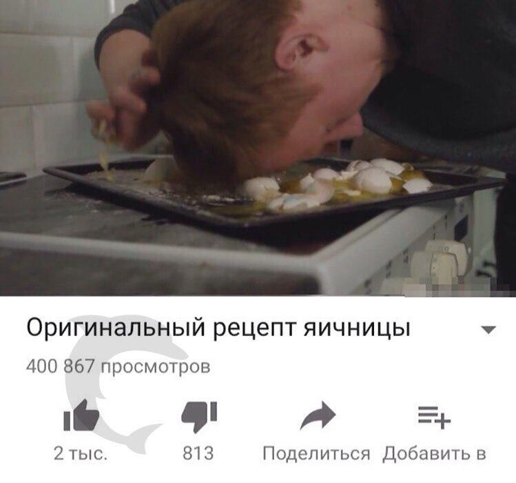 зая кашин
