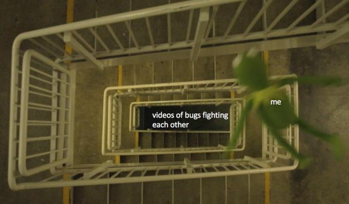 Падающий Кермит