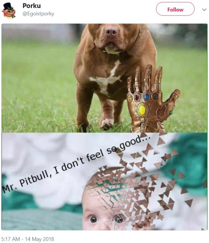 #PitbullDropOff