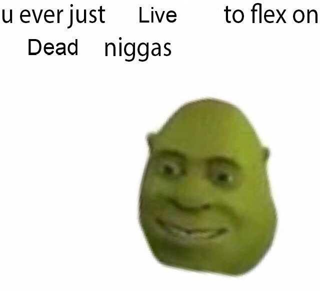 U Ever Flex on Niggas