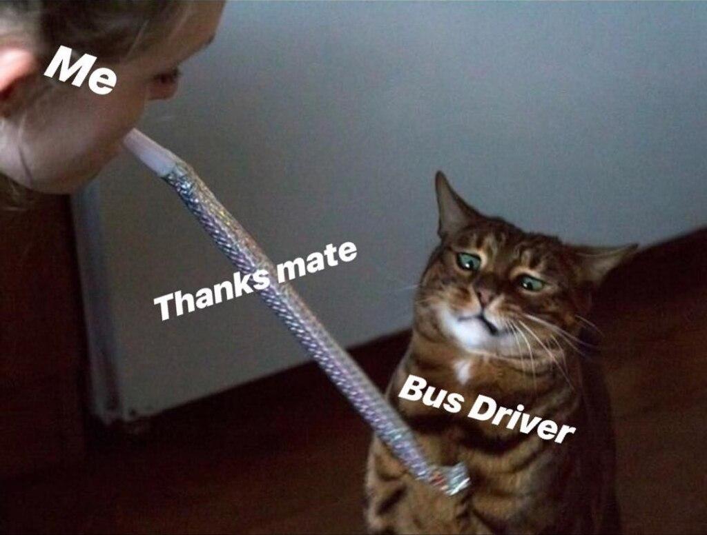 Скажи спасибо водителю автобуса