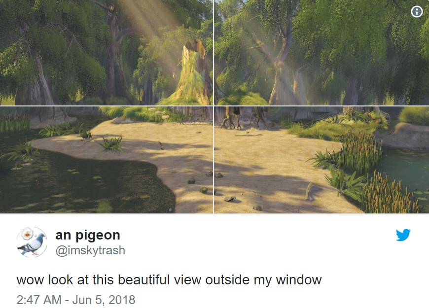 Полюбуйтесь видом из моего окна