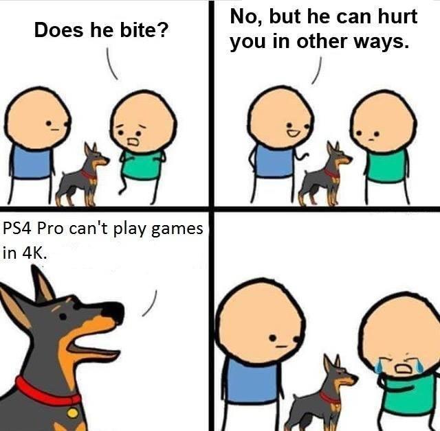 Ваша собака кусается?