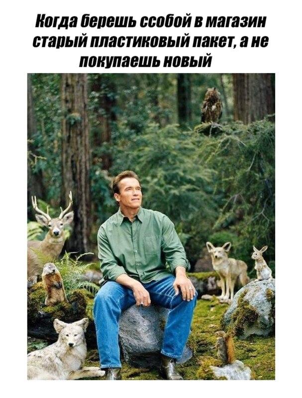 шварценеггер в лесу мем