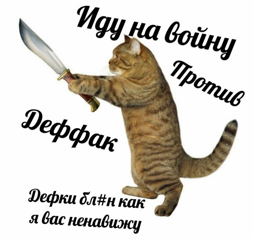 Кот против девок
