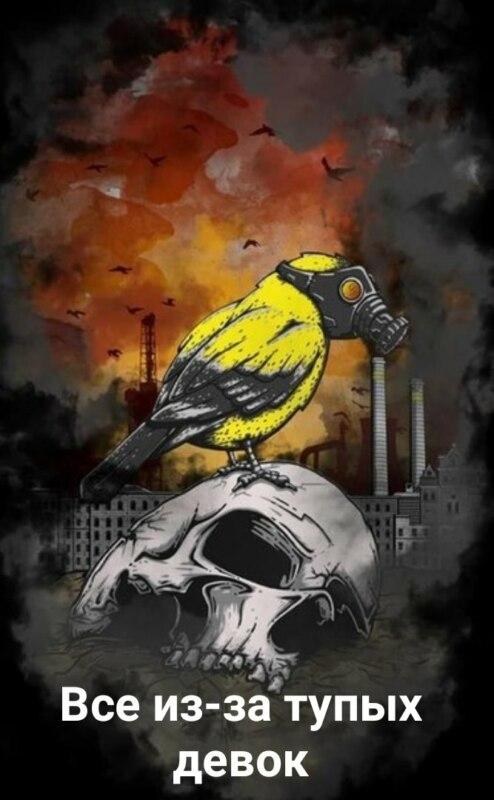 Птица в апокалипсисе из-за тупых девок
