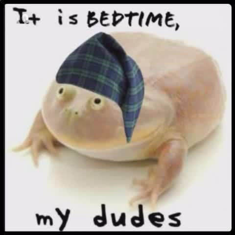 It Is Wednesday, My Dudes