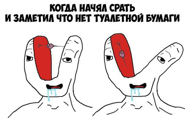 микромозг мем