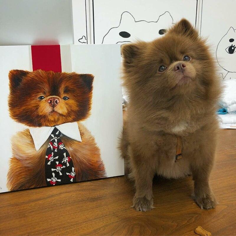 Пёс-мишка