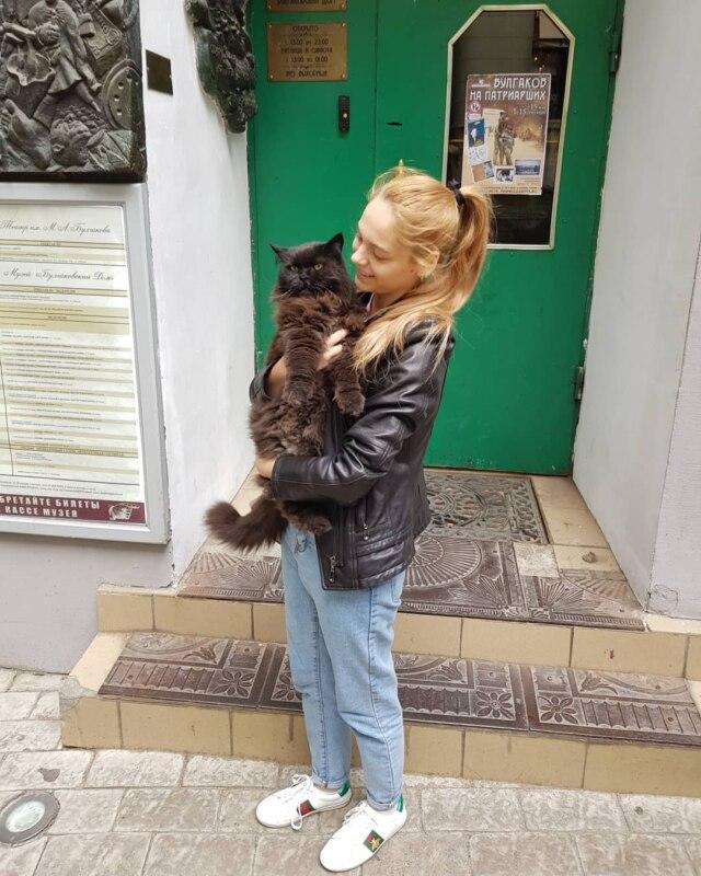 Похищение кота Бегемота