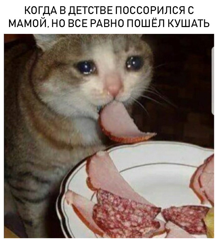 Мужские Мысли Яндекс Дзен