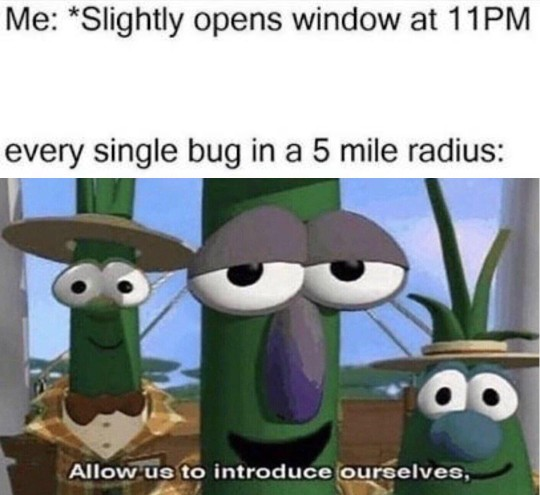 Allow Us to Introduce Ourselves