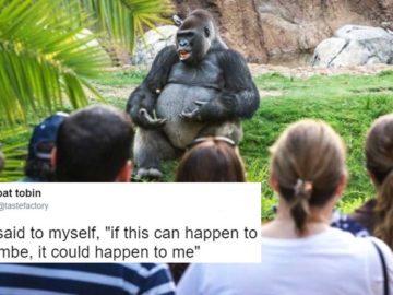 И я сказал себе, если это случилось с Харамбе, это может случиться и со мной