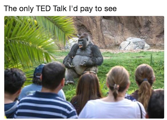 Лекция, за которую я бы заплатил