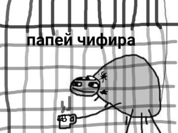 Папей чифира