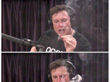 Илон Маск с косяком