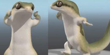 Танцующая ящерица