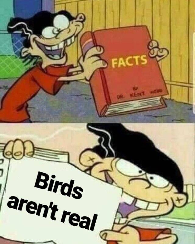 Птиц не существует