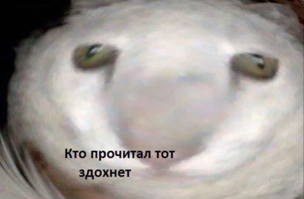 Маск попросил мемы