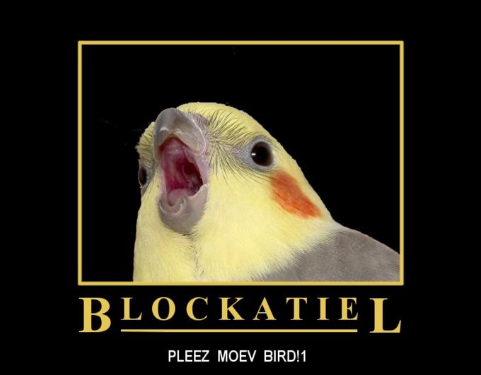 Blockatiel PLEEZ MOEV BIRD!1