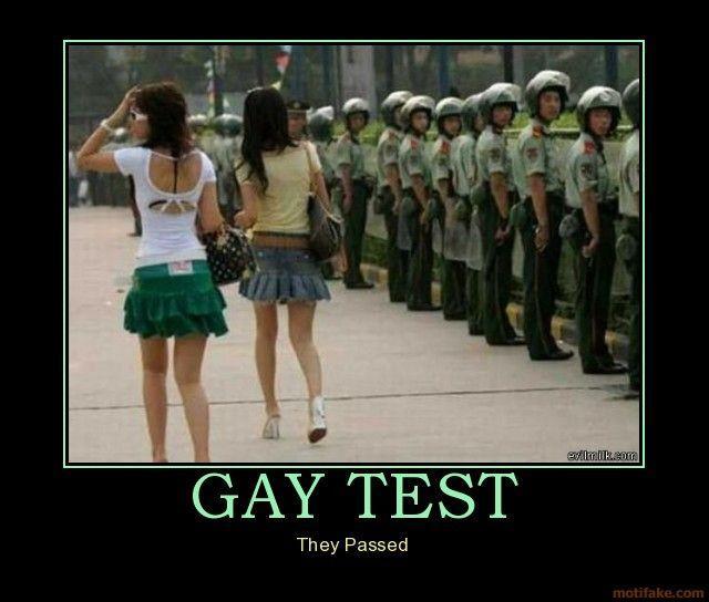 Гей тест - они прошли