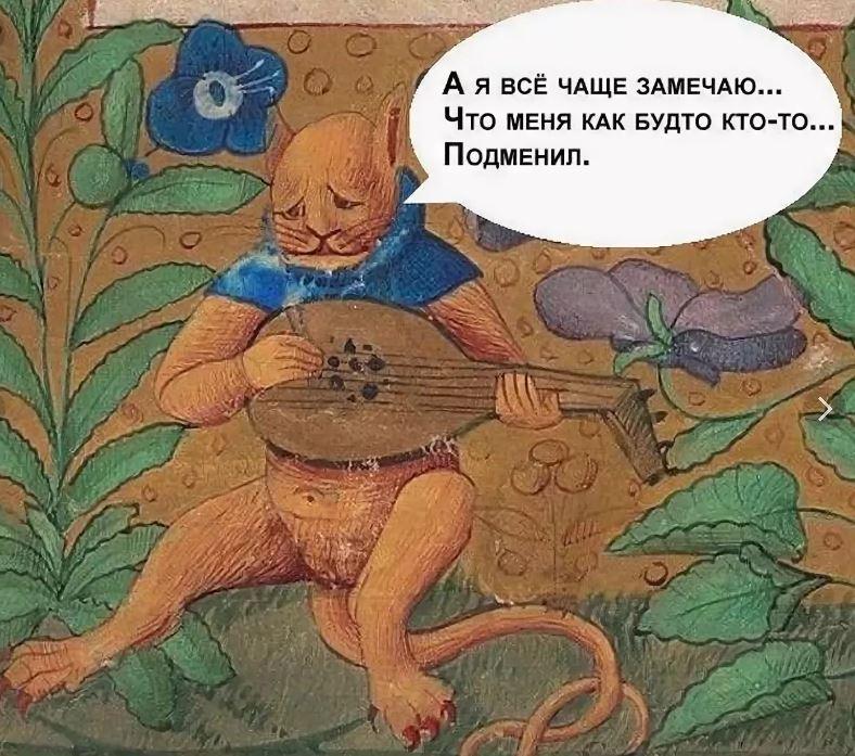 Юмор страдающее средневековье кот
