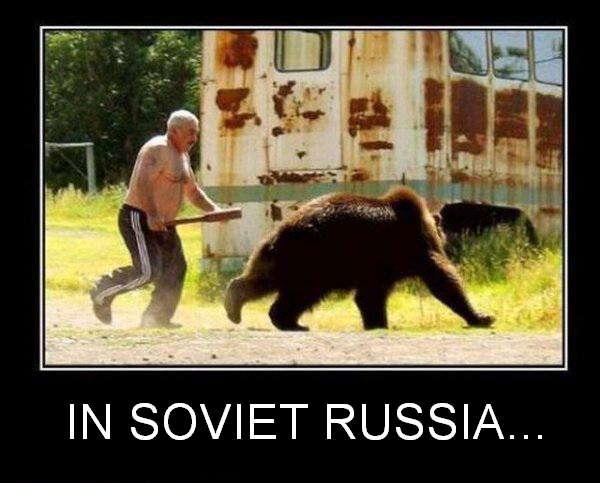 Медведь убегает от тебя