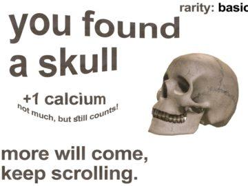 Коллекционный череп