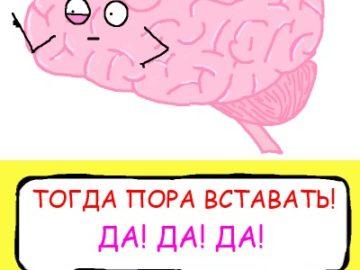 Мозг пора вставать посреди ночи