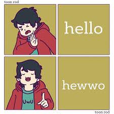 No Hello