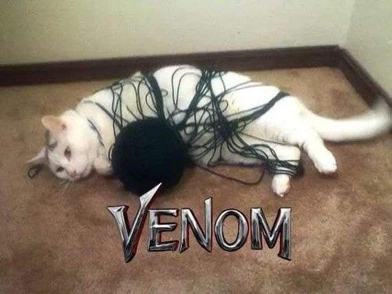 Веном
