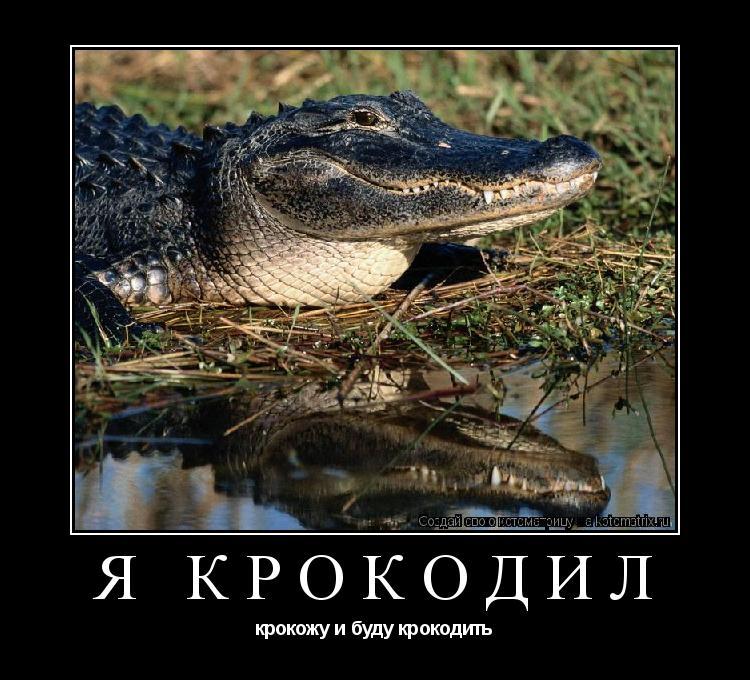 Я крокодил, крокожу и буду крокодить