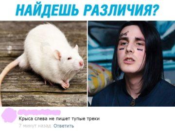 Фэйс - крыса