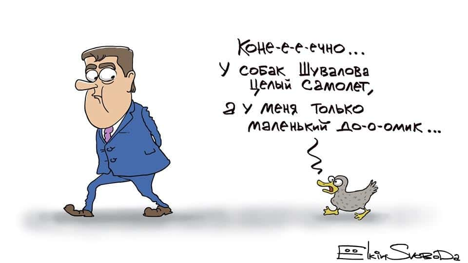 Уточка Медведева