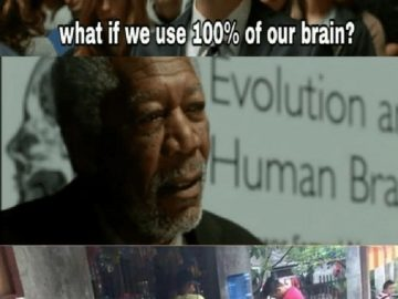What if We Used 100% of the Brain