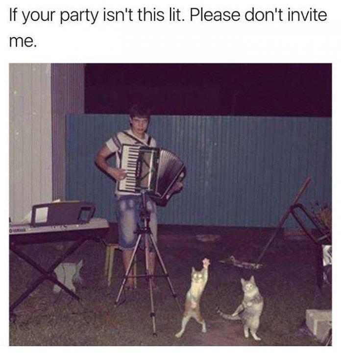 Если ваша вечеринка не похожа на нечто подобное...