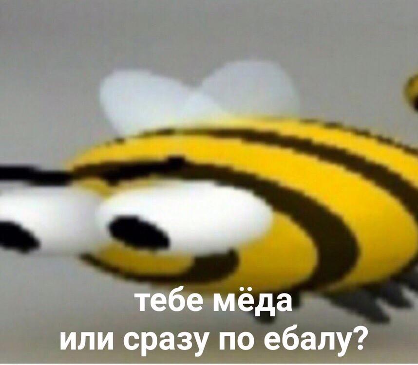 Жъжъь мем