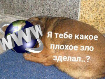 Реакция на возможность изоляции интернета в России