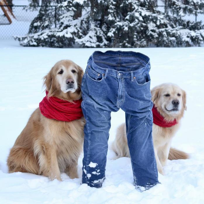 Замерзшие штаны, хвостики на лице и замерзшие волосы. Как США переживают аномальные морозы