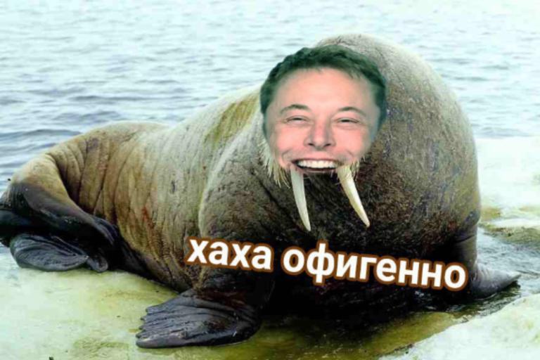Elon Tusk Илон Бивень