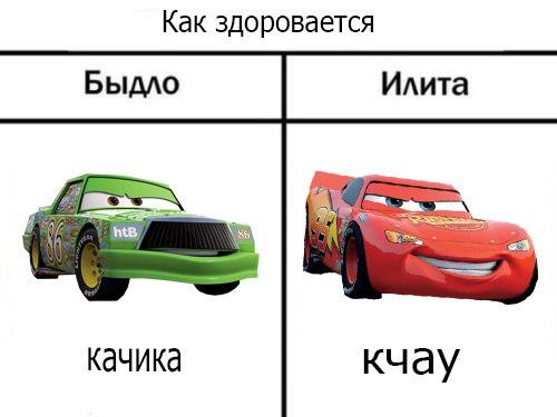 кчау мем