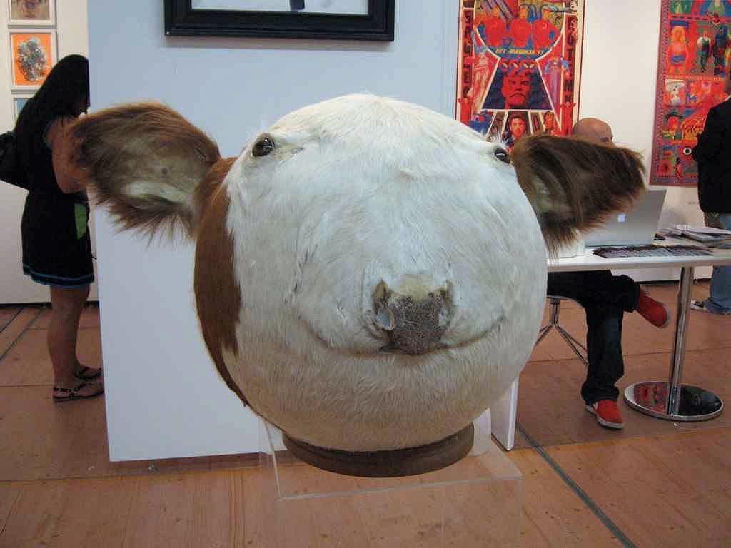 Сферическая корова