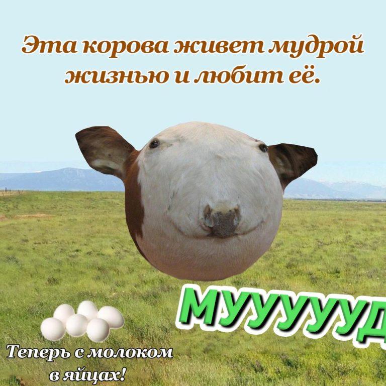 Сферическая корова мем