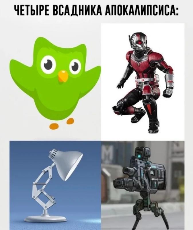 Мем с совой Duolingo