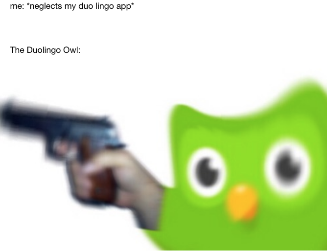 Мем с птичкой Дуолинго